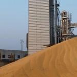 Особенности современных зерносушилок