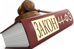 Обучение специалиста по закупкам – в чем разница между 44 ФЗ и 223 ФЗ?