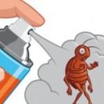 Эффективные способы борьбы с тараканами